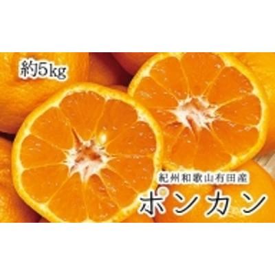 紀州和歌山有田産ポンカン 5kg※2022年1月下旬より順次発送(お届け日指定不可)