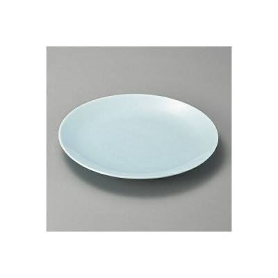 青地10.0丸皿 27425-480