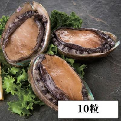 【10粒】<殻付き>蝦夷あわび