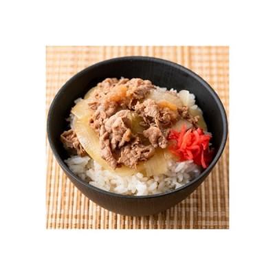 いちき串木野市 ふるさと納税 牛丼の具セット