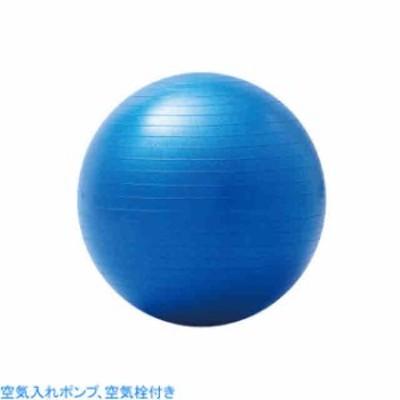 羽立 エクササイズ フィットネス エクササイズボール 大きいバランスボール 55cm  HATACHI NH3031