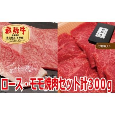 【化粧箱入り・最高級A5等級】飛騨牛ロース・モモ焼肉セット計300g