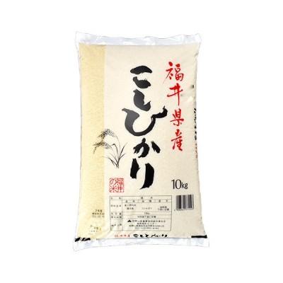 福井県産こしひかり 10kg ×1袋【送料無料】【精米】
