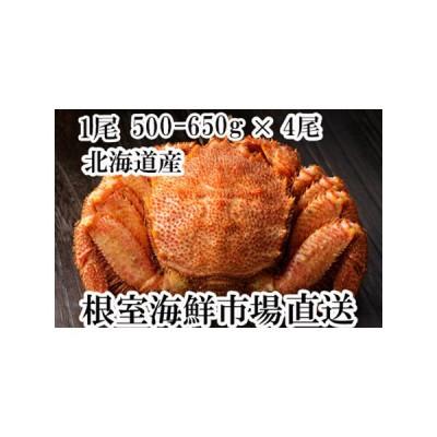 ふるさと納税 根室海鮮市場<直送>毛がに500〜650g×4尾 D-28005 北海道根室市
