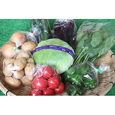 C-019.旬の新鮮野菜の詰合せ