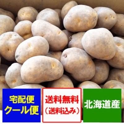 インカのめざめ 送料無料 北海道 新じゃがいも 北海道産 いんかのめざめ じゃがいも 5kg(5キロ)詰め S~Mサイズ 価格 3333円