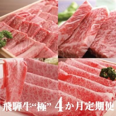 """飛騨牛""""極"""" 4か月 定期便 焼肉・しゃぶしゃぶ・ステーキ・すき焼き 堪能コース 飛騨牛 肉 和牛[Q107]"""