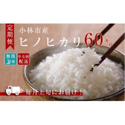 【定期便:全6回】小林産ひのひかり無洗米<10kg×6回> 31-SNB11