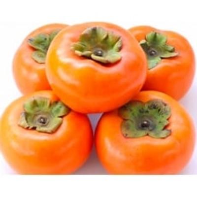 人気の秋の味覚【和歌山の富有柿】7.5kg ギフトにも!10月発送