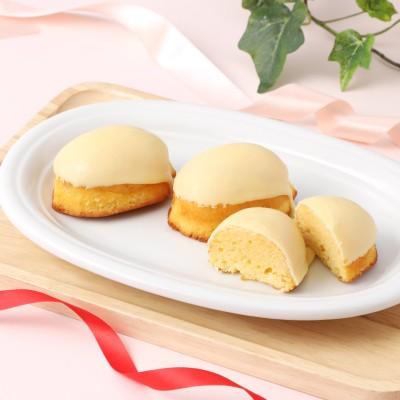 ベルジェ・ダルカディ弁慶堂 大人のレモンケーキ