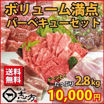 ボリューム満点5種バーベキューセット カルビ・みすじ/ヒウチ/イチボ・鶏モモ・豚バラ・ホルモンミックス たっぷり 2.8kg 送料無料 焼き肉  BBQ 牛肉 福袋