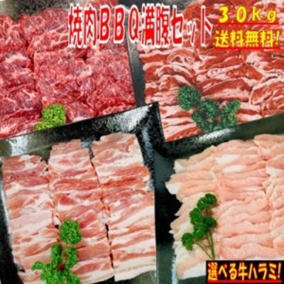 【味付けハラミおまけ付】焼き肉 バーベキュー 食材 3.0kg BBQ 肉 焼肉セット 牛カルビ 牛バラ 牛ハラミ 豚カルビ 豚バラ 豚トロ バーベ