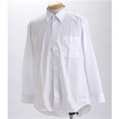 ds-242898 ブラック & ホワイト ワイシャツ2枚セット 長袖 LL 【 2点お得セット 】 (ds242898)