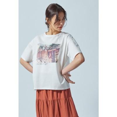 LAUTREAMONT 【WEB別注】フォトグラフプリントTシャツ《洗濯機で洗える》