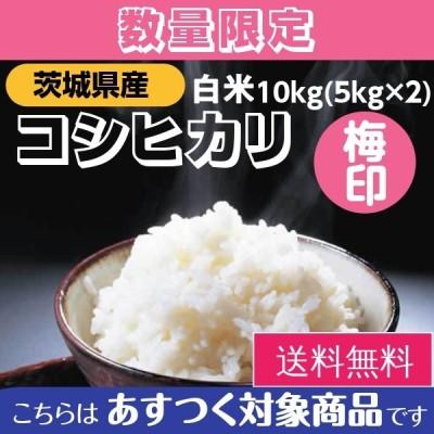 米 お米 10kg コシヒカリ 茨城県産  2年産 白米 送料無料 一部地域除く 梅印