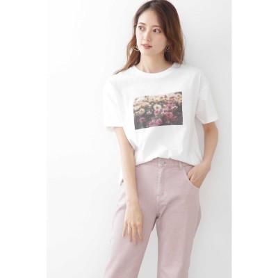 スローガンTシャツ(フォトT) ホワイト