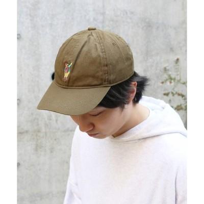 帽子 キャップ COB MASTER WASHED DAD CAP 2