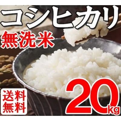 【送料無料】令和2年産滋賀県産 無洗米コシヒカリ 20kg 【単一原料】滋賀県で収穫したお米を総称して近江米と呼びます。その優れた品質と食味は、高い評価を受けています。