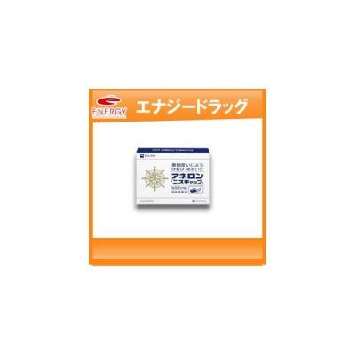 【第(2)類医薬品】エスエス製薬 アネロン「ニスキャップ」 アネロン ニスキャップ 9カプセル