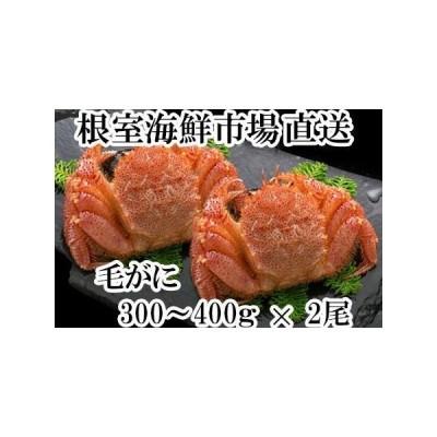ふるさと納税 浜ゆで毛がに300〜400g×2尾 B-14028 北海道根室市