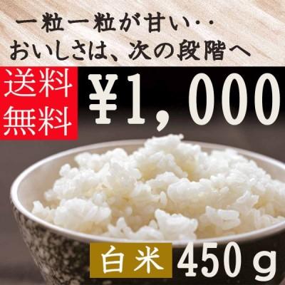 静岡県産 きぬむすめ 450g(約3合分) 送料無料 白米 雑穀米本舗