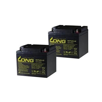 シールド式 《LONGバッテリー 12V 45Ah 密閉型》 セニアカーバッテリー シールド式 WP45-12 2個セット