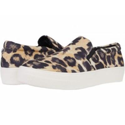 Steve Madden スティーブマデン レディース 女性用 シューズ 靴 スニーカー 運動靴 Gills-C Sneaker Leopard Canvas【送料無料】