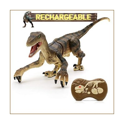 Hot Bee Remote Control Dinosaur Toys, Big Walking Dinosaur Robot w/ Led Light & Roaring 2.4Ghz Simulation RC Velociraptor Toys Gifts for Kid
