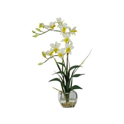特別価格Nearly Natural 1135-CR デンドロビウム ガラス花瓶付き シルクフラワーアレンジメント クリーム好評販売中