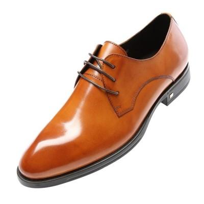 W メンズ ビジネスシューズ レザー 本革 革靴 紳士靴 プレーントゥ ポインテッドトウ レースアップ メダリオン 定番のシューズ オフィス(ブラウン)8851-01