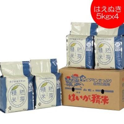 無洗米 はえぬき 胚芽精米 20kg  5kg x4 送料無料 山形県産