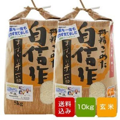 【新米2020】無農薬米 コシヒカリ 10kg コシヒカリ福岡県産 令和2年産
