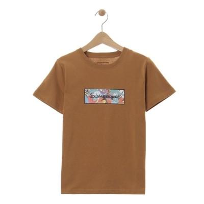 セール SALE セール SALE クイックシルバー QUIKSILVER  BOX ST KIDS Kids T-shirts