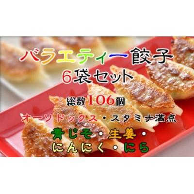 バラエティー餃子6袋セット