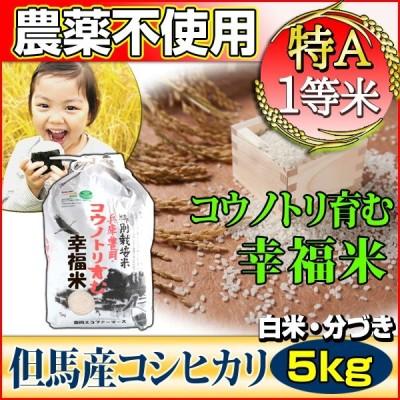 お米 5kg コシヒカリ 特別栽培米 農薬不使用 兵庫県 但馬産 コウノトリ育む幸福米 特A 一等米 令和2年産 タイムセール 安い