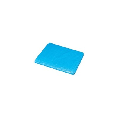 アイリスオーヤマ/ブルーシート#1500 薄手 約3.4×5.3m/B15-3654E