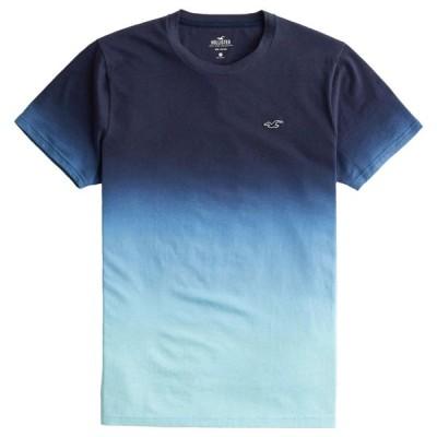 【並行輸入品】【メール便送料無料】ホリスター メンズ Tシャツ ( 半袖 ) Hollister Must-Have Crewneck T-Shirt (ネイビー) 【tシャツ tシャツ 】
