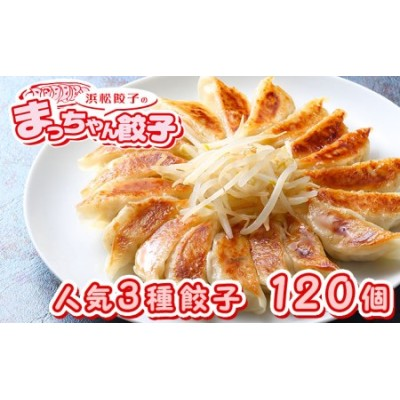 浜松餃子のまっちゃん餃子人気3種 計120ヶセット【配送不可:沖縄県・離島】