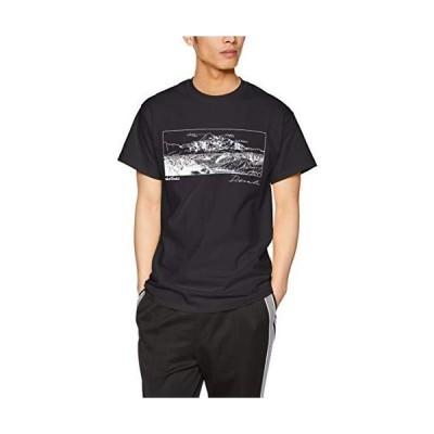 ワイルドシングス Tシャツ Denali メンズ BLACK 日本 S (日本サイズS相当)