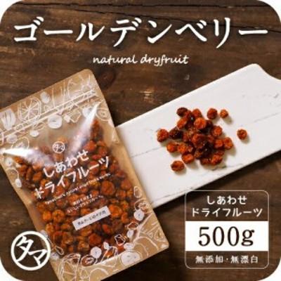 【送料無料】ゴールデンベリー500g(250g×2袋)美容健康のスーパーフードとして世界的に注目!ゴールデンベリー インカベリー ジャム シ