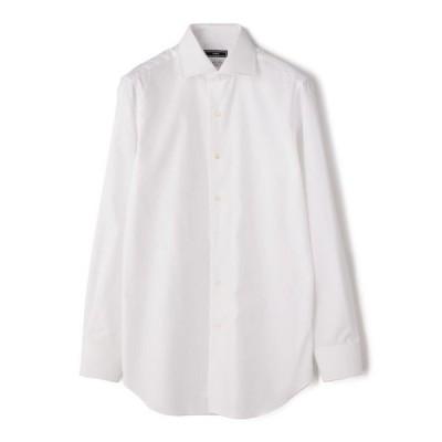 SD: ALBINI ソリッド ワイドカラーシャツ