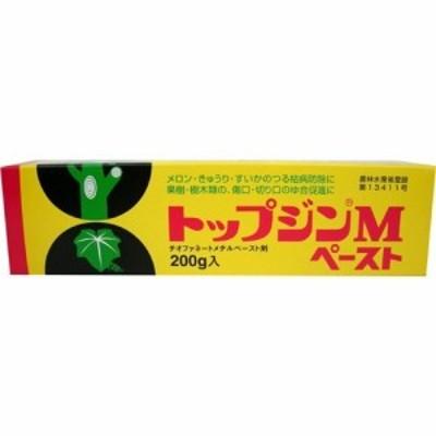 【トップジンM ペースト 200g】