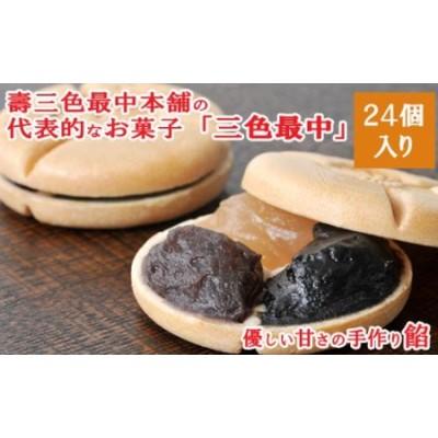 831709 銘菓「三色最中」小豆・白・ごま餡 24個入