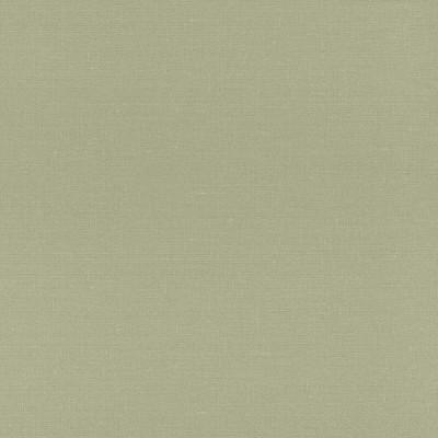 輸入壁紙 rasch2020 401851 織物 無地 グリーン