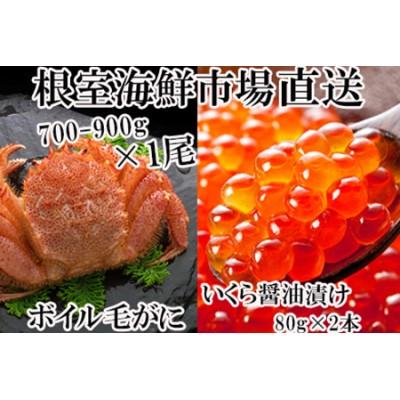 根室海鮮市場<直送>ボイル毛ガニ700~900g×1尾、いくら醤油漬け80g×2P B-28027