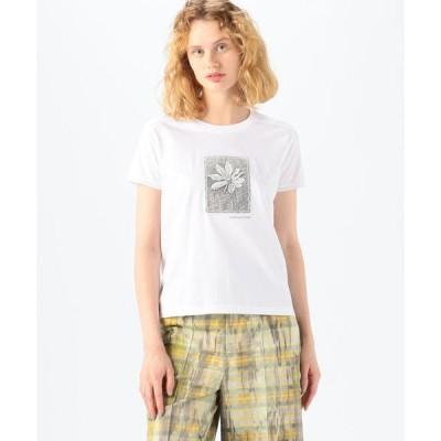 tシャツ Tシャツ CABaN Costarica アートTシャツ