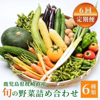 定期便 年6回 鹿児島県枕崎産旬の野菜の詰め合わせ 野菜セット 国産 九州 厳選