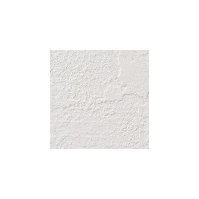 サンゲツ 壁紙 ファイン FE6691 92.5cm 1m長 糊なし