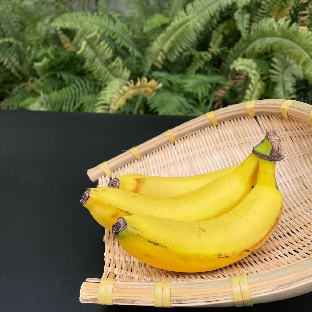 蝦皮生鮮 嚴選香蕉 400g (±10%)(約2-5根) 廠商直送