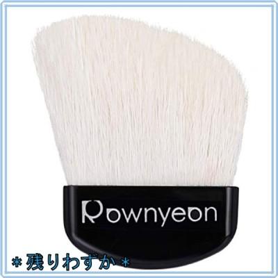 ROWNYEON メイクブラシ 扇型 化粧ブラシ 斜め パウダーブラシ フェイスブラシ ハイライトブラシ 携帯用 ケース付